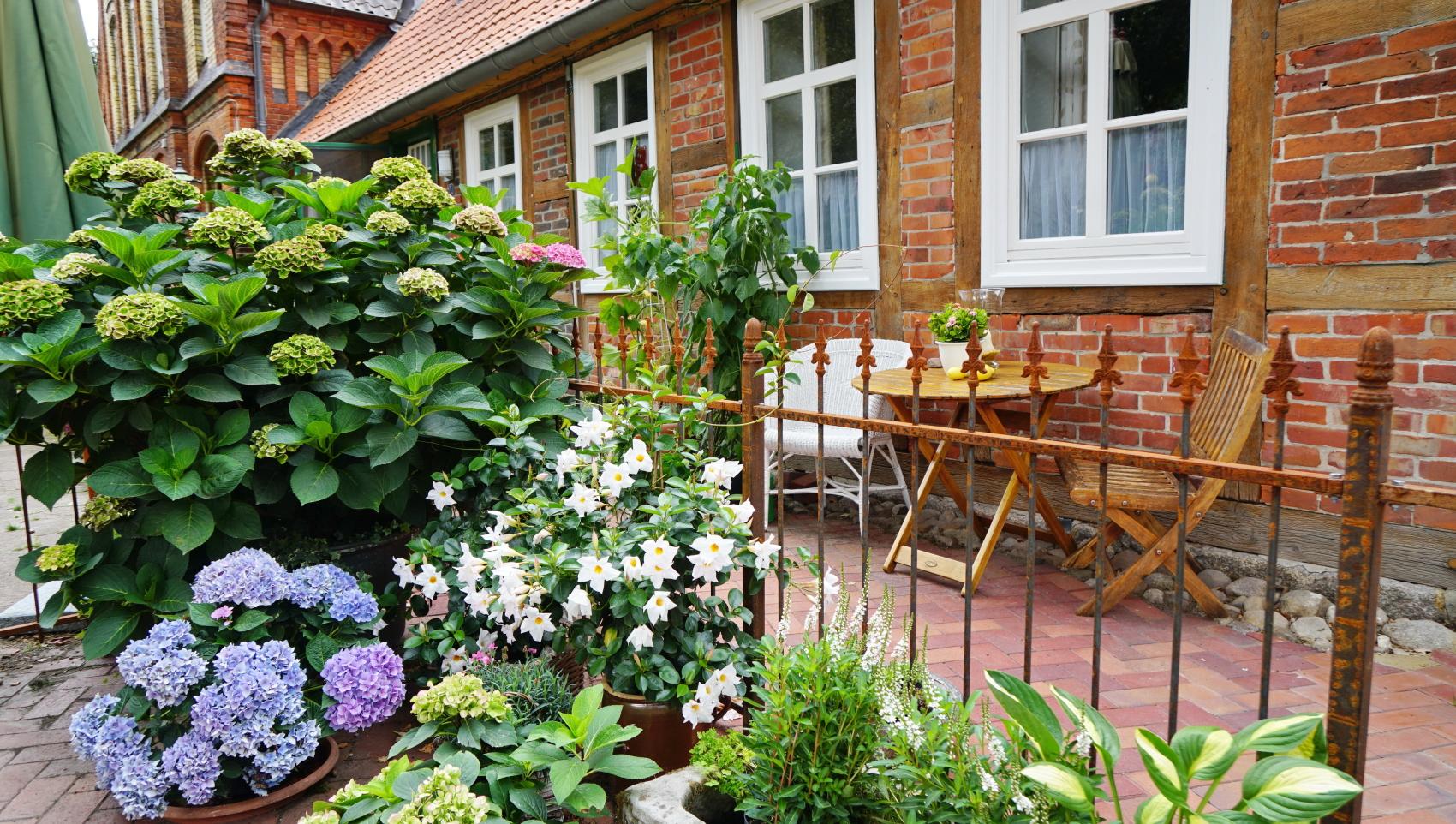 Read more about the article Urlaub auf dem Lande wird als erstes starten.