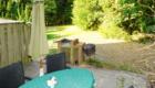 Wohnung 5 Terrasse Garten