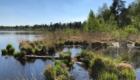 Grundloser See