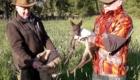 Kitze retten, denn es wird Gras gemäht