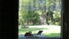 Aussicht in den Garten von Haus 7